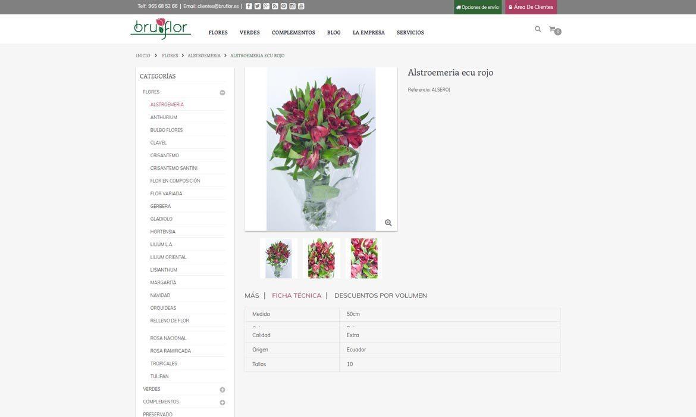 Ficha de producto Bruflor