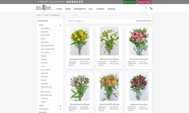 Bruflor tienda online